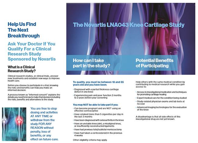 The Novartis LNA043 Knee Cartilage Study